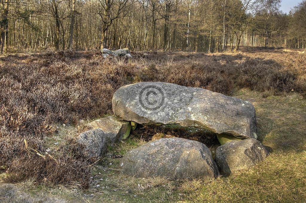 Hunebedden D38 (achtergrond) en D39, Emmerveld, Valtherbos, Emmen (Drenthe)