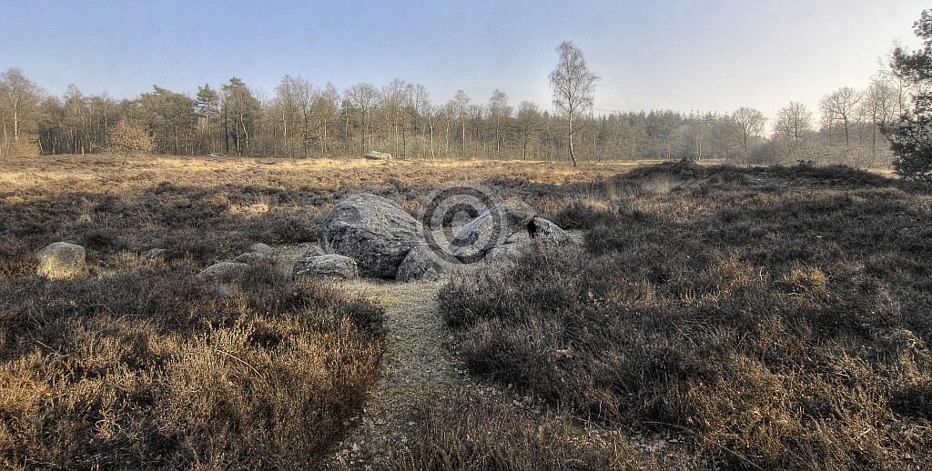 Hunebedden D38 (voorgrond) en D40, Emmerveld, Valtherbos, Emmen (Drenthe)