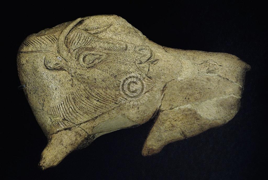 Gravure van een bison, Laat-Paleolithicum, Abri La Madeleine
