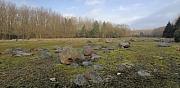 Keileemreservaat P. van der Lijn, Urk (Flevoland)
