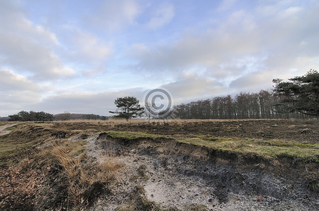 Bakkeveen, Mandeveld (Fryslân)